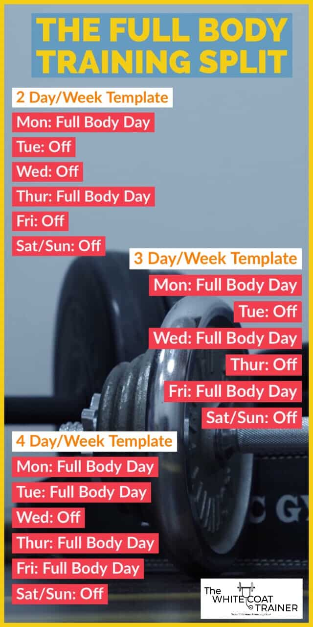 2-day-3-day-4-day-workout-split
