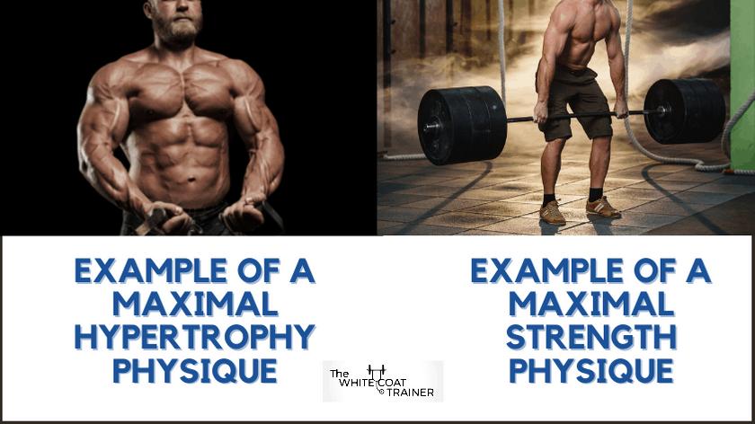 strength-vs-hypertrophy-physique