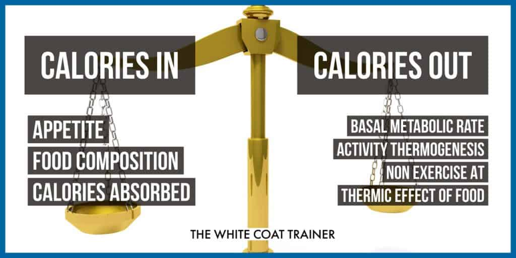 calories-in-vs-calories-out-weight-loss