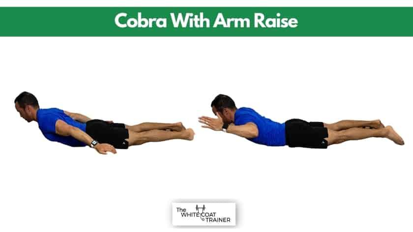 cobra-thoracic-spine-mobility
