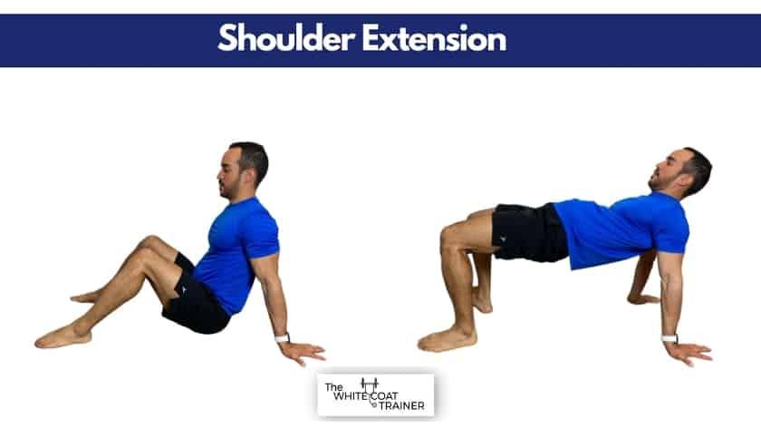 shoulder-extension-reverse-bridge
