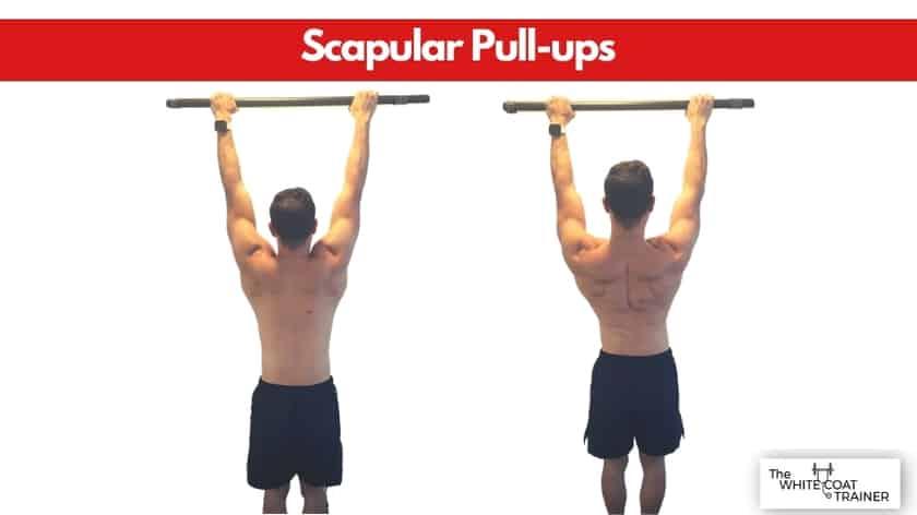 scapular-pull-ups